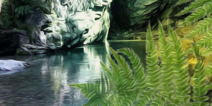 Il Giardino di Solange, parte III