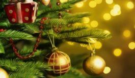 L'albero di Natale del manicomio