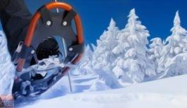 Sì sì, che belle le vacanze sulla neve