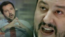 Salvini e le scimmie urlatrici