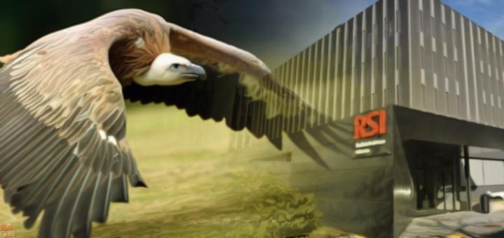 avvoltoi RSI