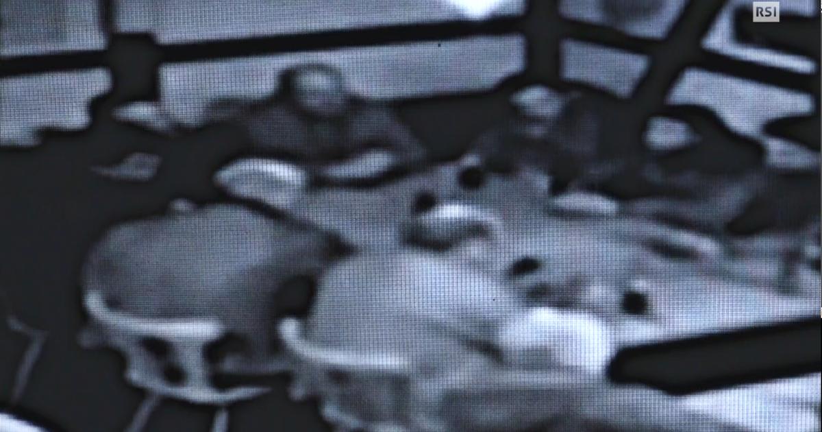 Ndrangheta in Svizzera, l'inchiesta di 'Falò' - Il Video