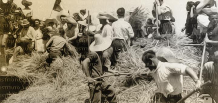 ticino contadino