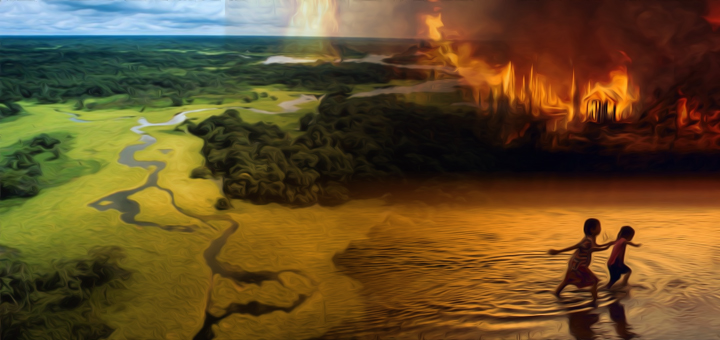 amazzonia brucia