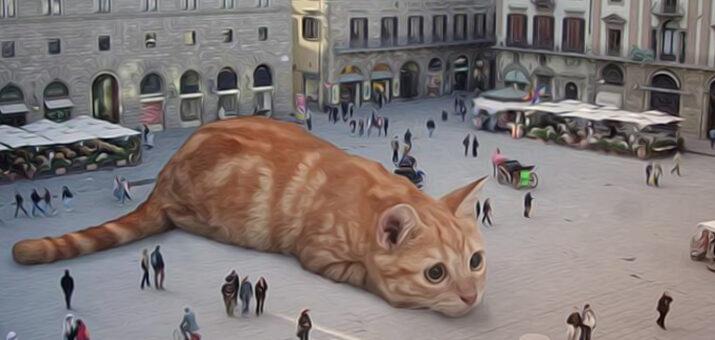 gatto-gigante
