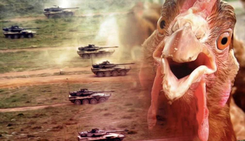 galline-carri-armati