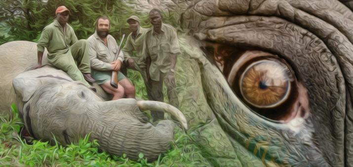 caccia-elefanti
