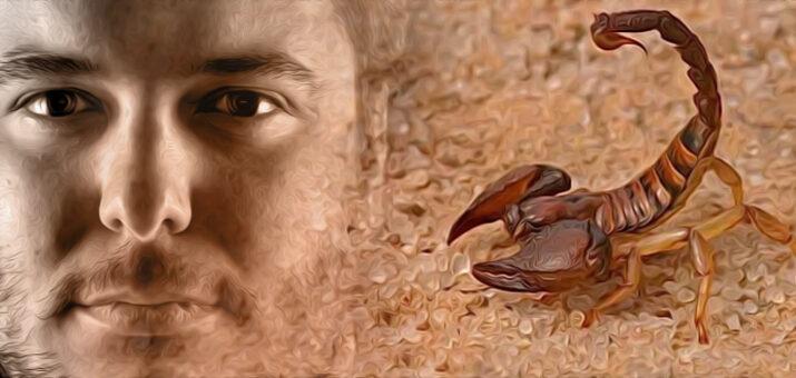 Boris-scorpione
